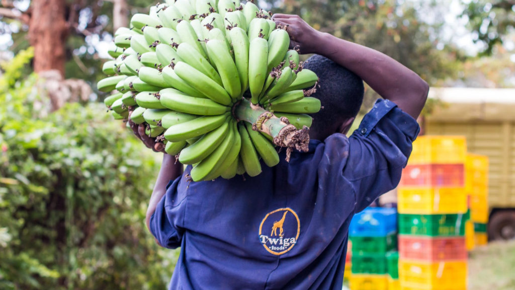Kenya's Twiga Foods secures $10m investment from IFC, TLcom