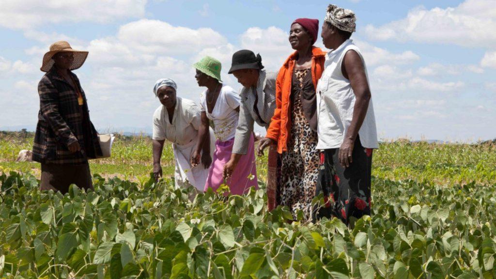 Featured image: EBAFOSA Kenya via Twitter