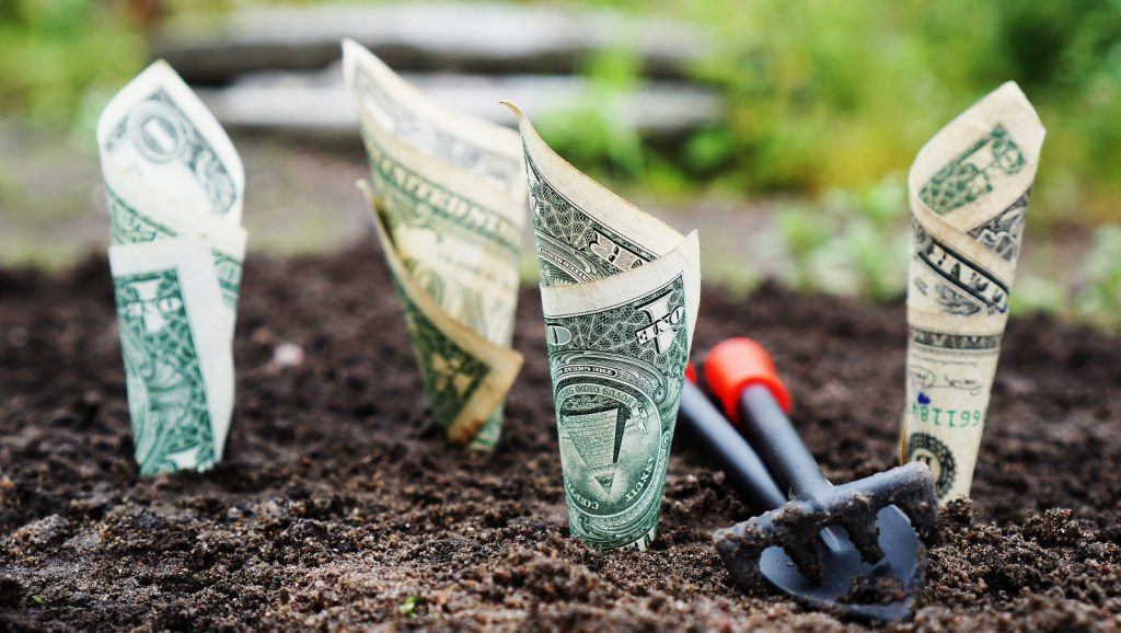 https://pixabay.com/photos/money-grow-interest-save-invest-1604921/