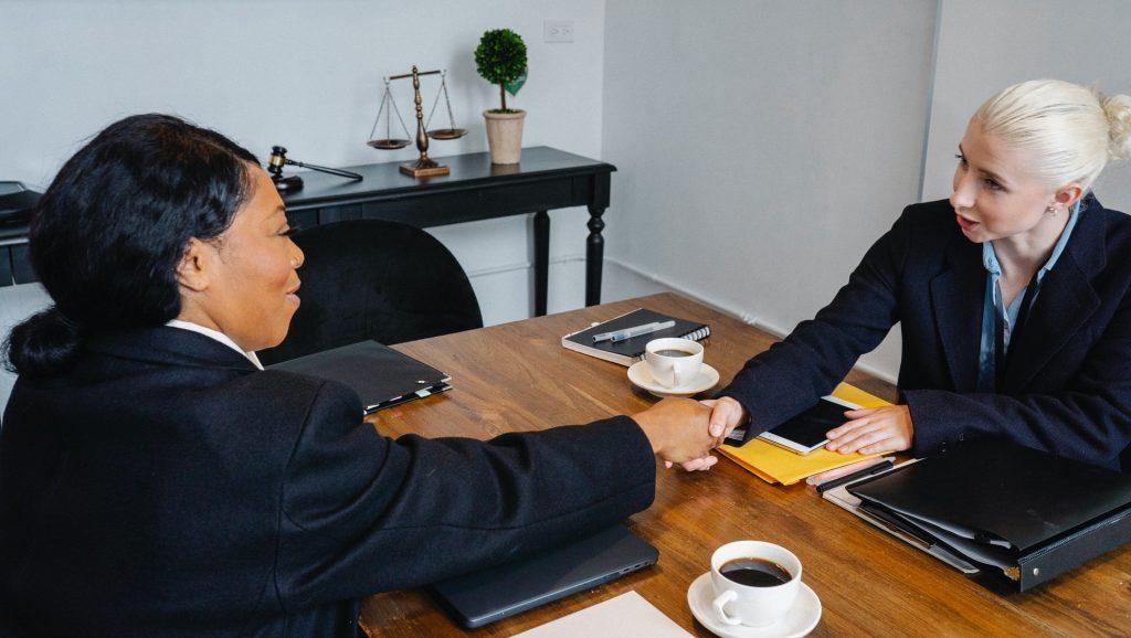 https://www.pexels.com/photo/cheerful-businesswomen-shaking-hands-during-meeting-5668529/