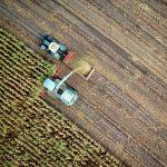 GIZ-SAIS Investment Readiness programme agriculture agritech foodtech startups
